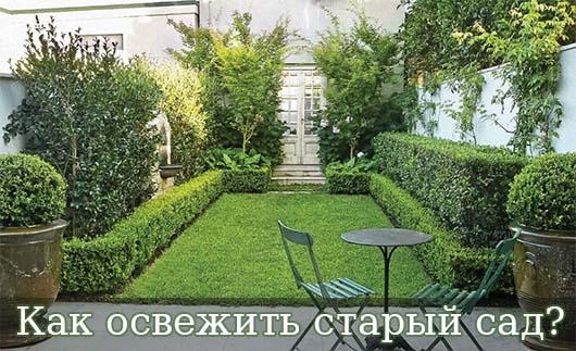 Как освежить старый сад?