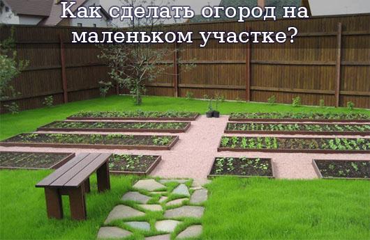 Как сделать огород на маленьком участке?